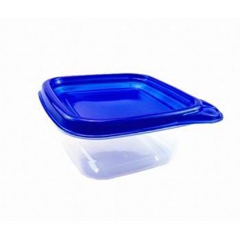 EAMASY  9.5OZ/280ML MINI SQUARE FOOD CONTAINER